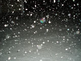 2006年11月22日降雪
