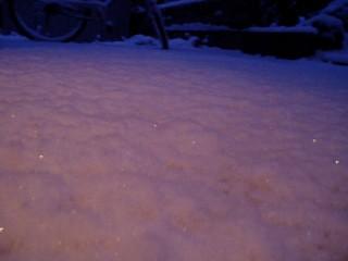 2006年11月30日積雪